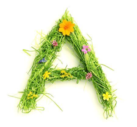 lettre de l alphabet: Lettres de fleurs et d'herbe isol� sur blanc Banque d'images