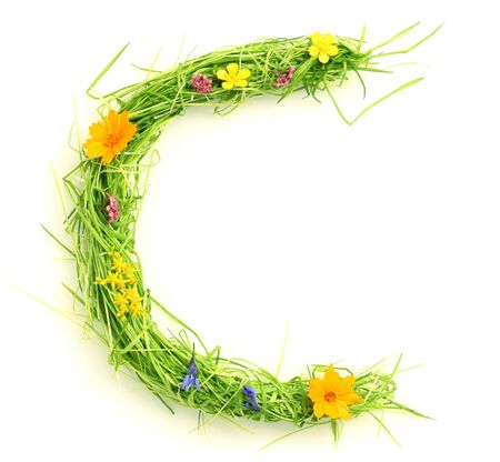 Letters made of flowers and grass isolated on white Stock Photo - 9448676