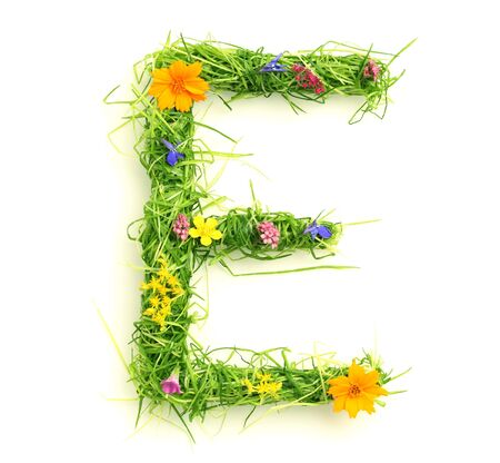 uppercase: Cartas de flores y hierba aislados en blanco Foto de archivo