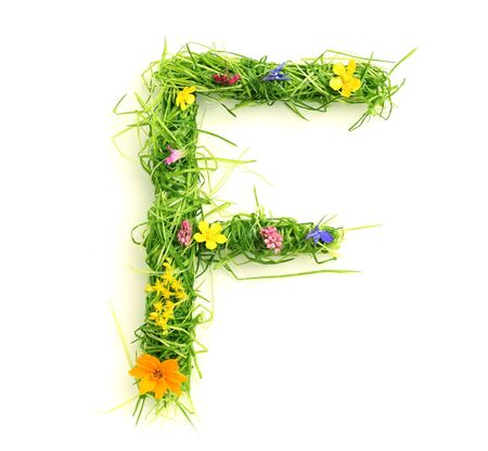 Letters made of flowers and grass isolated on white Stock Photo - 9448117