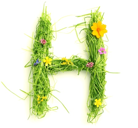 Letters made of flowers and grass isolated on white Stock Photo - 9448119