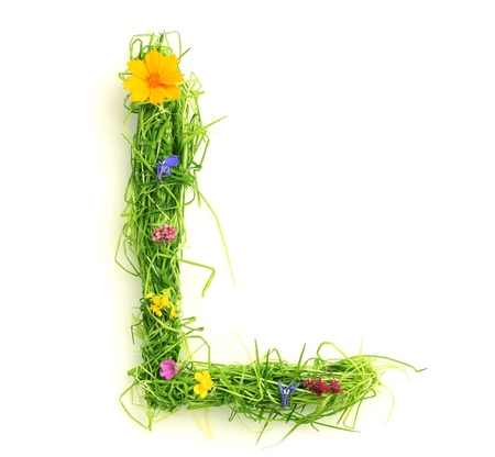 Letters made of flowers and grass isolated on white Stock Photo - 9448111