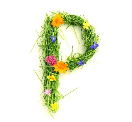 Letters made of flowers and grass isolated on white Stock Photo - 9448115