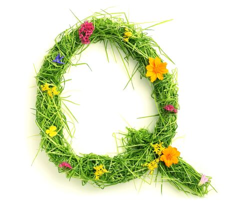 Letters made of flowers and grass isolated on white Stock Photo - 9448126