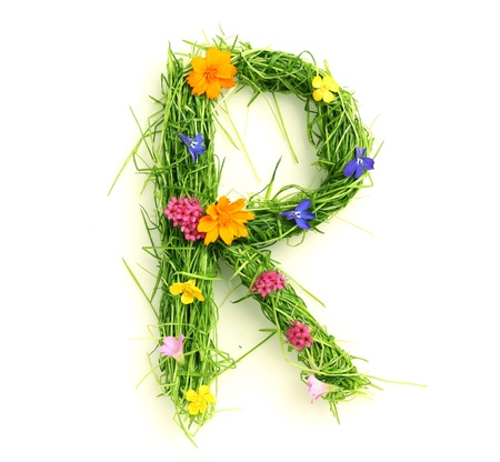 Letters made of flowers and grass isolated on white Stock Photo - 9448682