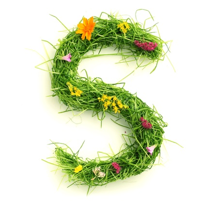Letters made of flowers and grass isolated on white Stock Photo - 9448121