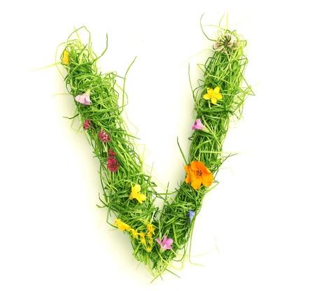 Letters gemaakt van bloemen en gras geïsoleerd op wit