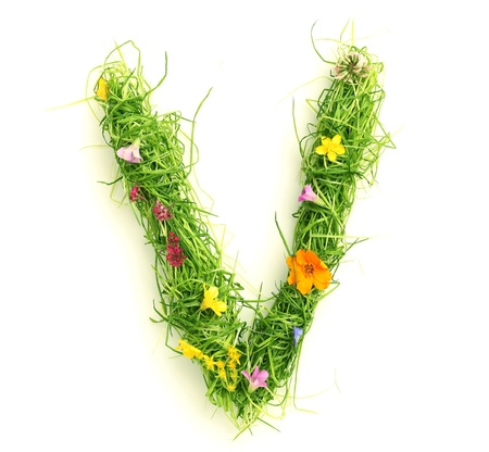 Letters made of flowers and grass isolated on white Stock Photo - 9448683
