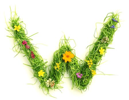 capital letters: Letters made of flowers and grass isolated on white Stock Photo