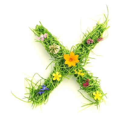 spring message: Letters made of flowers and grass isolated on white Stock Photo