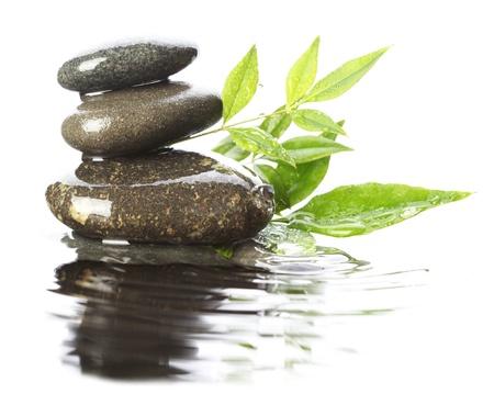 piedras zen: Piedras en el agua con las hojas Foto de archivo