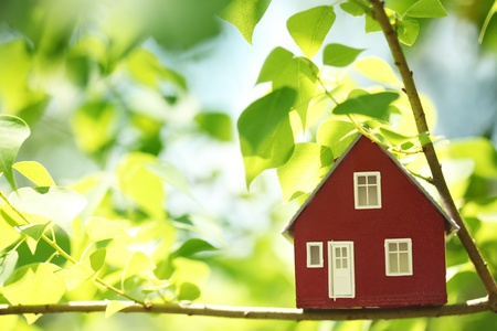 House in the trees Stock Photo - 10229396