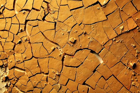 Dried cracked earth photo