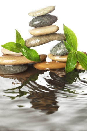 spa rocks: Stones in water with leaves Stock Photo