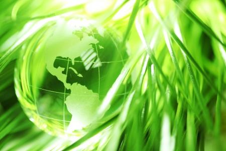 reciclar: Globo de cristal en hojas verdes