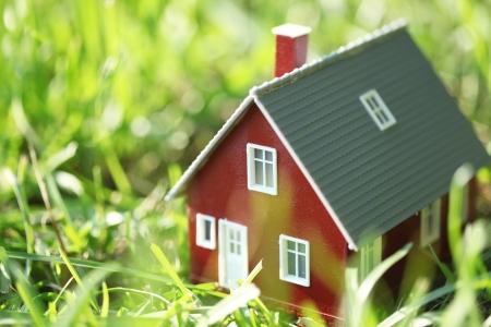 緑の草に小さな赤い家