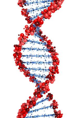 DNA helix Banque d'images