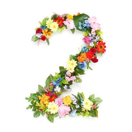 Numbers made of leaves and flowers