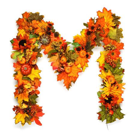 Autumn alphabet photo
