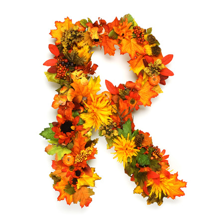 Autumn alphabet photo