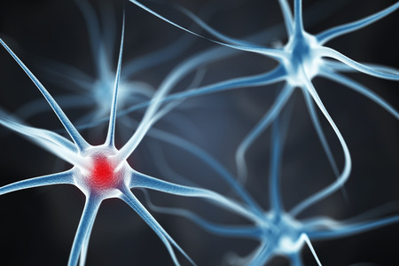 Neurons in the brain 스톡 콘텐츠