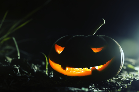 Jack o lantern Halloween background