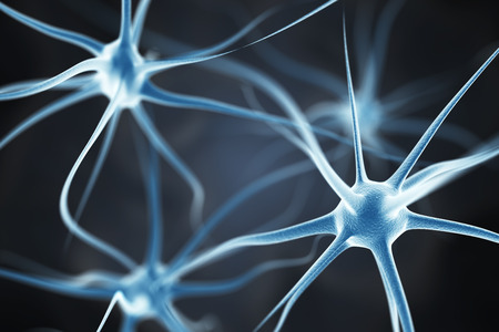 brain cells: Neurons in the brain Stock Photo
