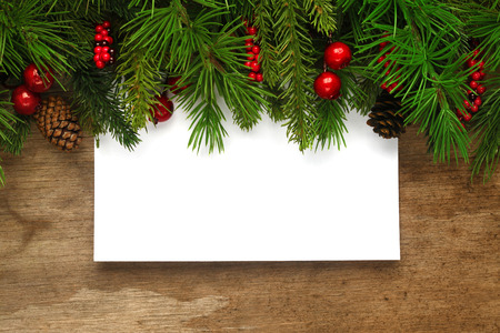 Christmas tree branches background photo