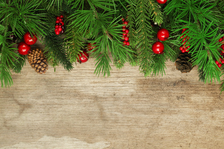 feliz navidad: Christmas tree branches background