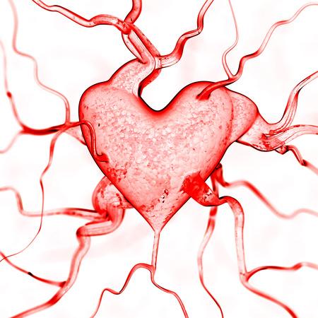 healthy arteries: Heart background