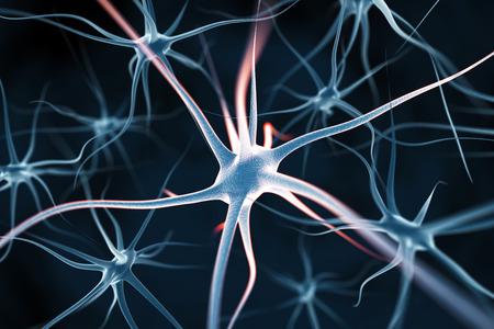 neuron: Las neuronas resumen de antecedentes Foto de archivo