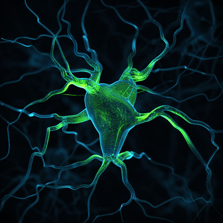 sensory receptor: Neurons abstract background Stock Photo