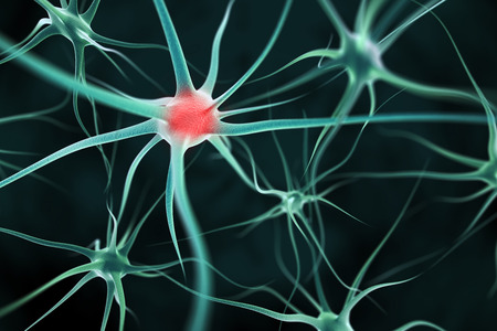 micro organism: Neurons abstract background Stock Photo