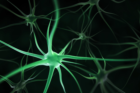 biologia: Las neuronas resumen de antecedentes Foto de archivo
