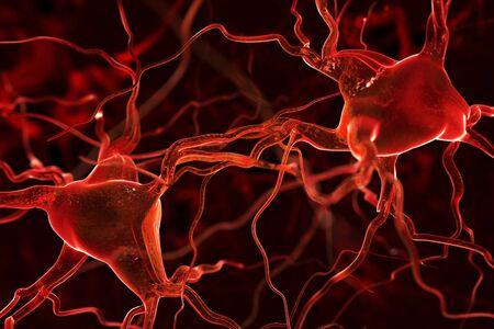 vasos sanguineos: Nervios fondo abstracto