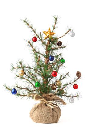 白で隔離小さい飾られたクリスマス ツリー 写真素材
