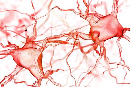 cellule nervose: Nervi astratto