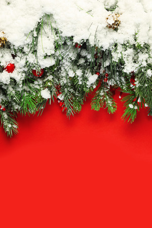 neige noel: Christmas branches covered in snow