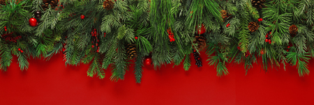 spruce: Christmas branches background