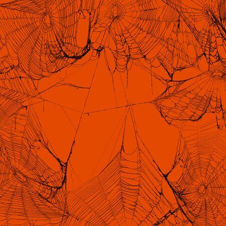 Real spooky spider webs hanging together to make a frame. Halloween background. Imagens