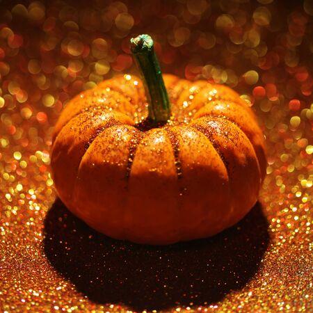 Single pumpkin on sparkly orange background Stock fotó