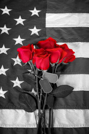 Black and white American flag with red roses 版權商用圖片