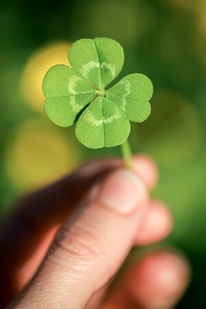 Holding a lucky four leaf clover, good luck shamrock, or lucky charm. 版權商用圖片 - 141028543