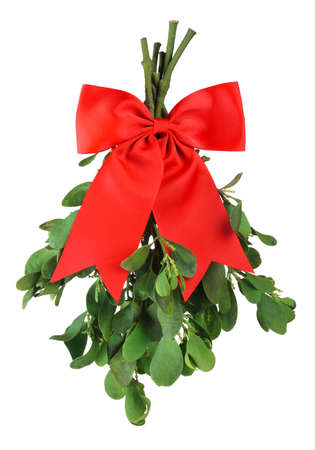 Sprig of fresh green mistletoe tied with bright red Christmas bow. Isolated on white.