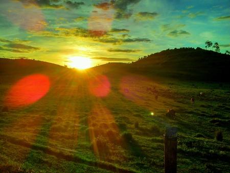farm field: Sunset in a farm field Stock Photo