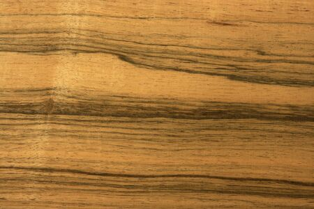 texture of the treated wooden board for furniture by macro Stock Photo - 3276330