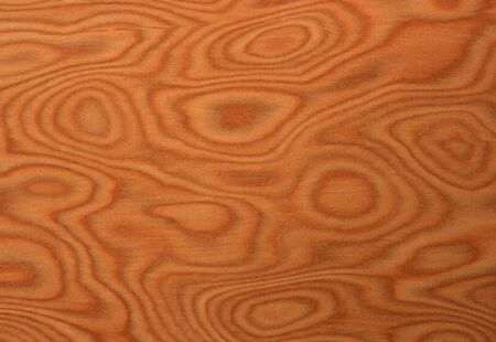 texture of the treated wooden board for furniture by macro Stock Photo - 3276328