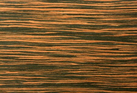 texture of the treated wooden board for furniture by macro Stock Photo - 3276332