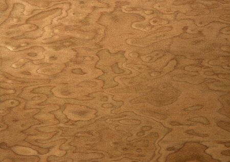 treated board: texture of the treated wooden board for furniture by macro