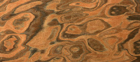 texture of the treated wooden board for furniture by macro Stock Photo - 3276326